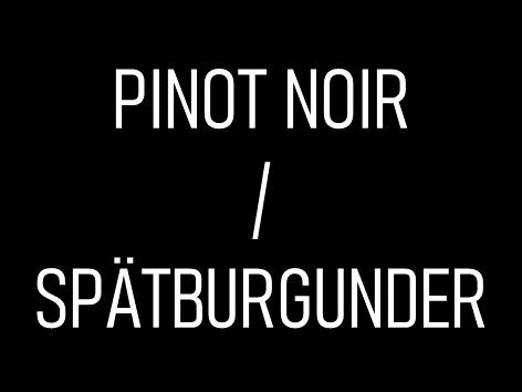 Pinot Noir / Spätburgunder